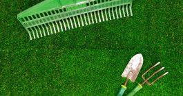 Kunstrasenpflege Fixgreen